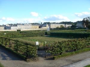 ヴェルサイユ宮殿王室菜園