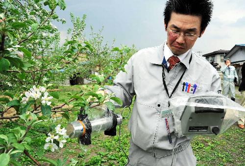 リンゴの放射線計測