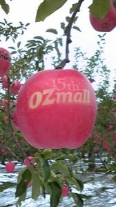 OZmallロゴ入りリンゴ