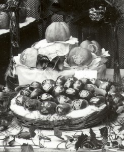 フランス絵入りりんご資料3